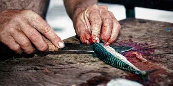 Cutting for Fish